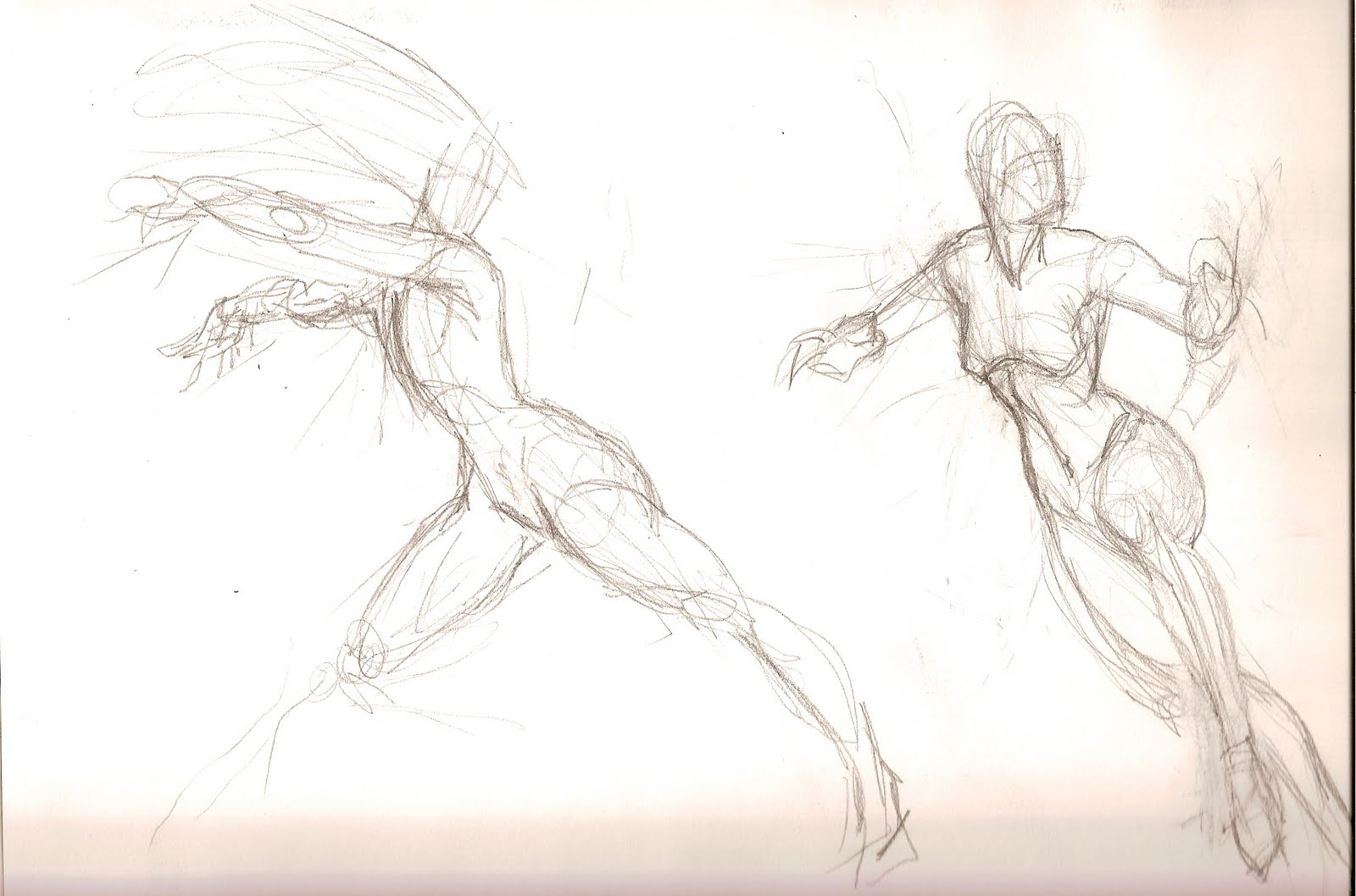 The gallery for --> Still Life Gesture Drawings