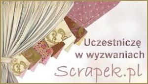 Wyzwanie Scrapek.pl