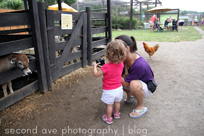 Blog, Photographer, Photography, Second Ave Photography, Virginia photographer, zoo, pet photographer