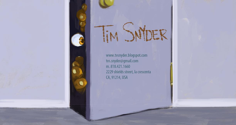 Tim Snyder Portfolio