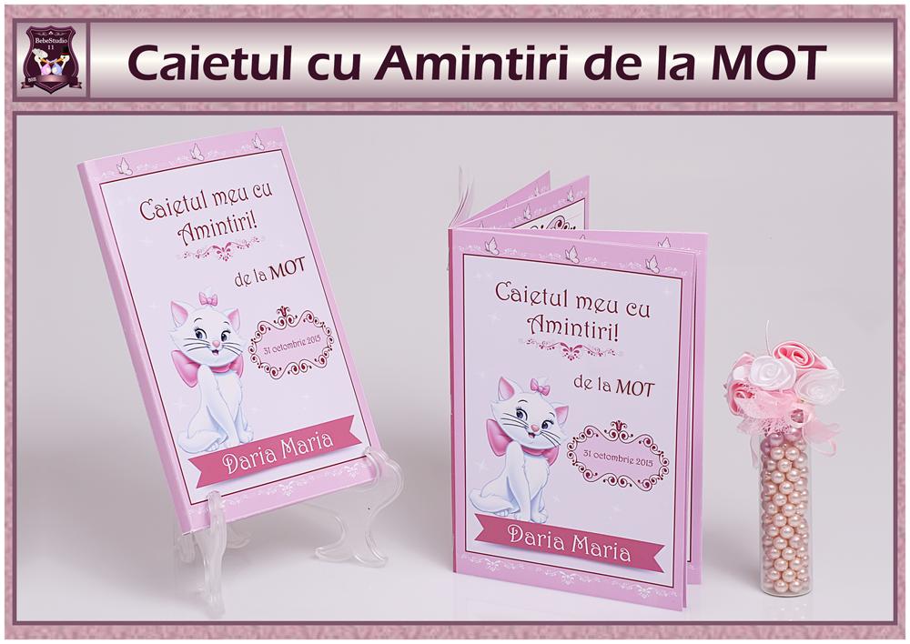 MOT - CAIET AMINTIRI