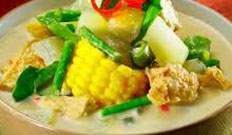 Resep masakan indonesia sayur lodeh soesial, praktis, mudah, enak, lezat