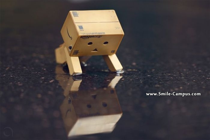 Cute Inspiring Boxes pictures