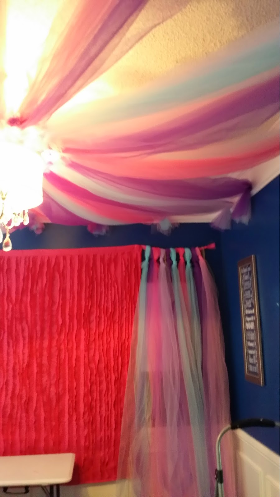 & Tulle Canopy