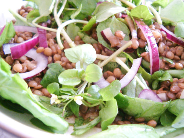 Warm Puy Lentil Salad with Baby Spinach and Watercress and a Balsamic Dressing