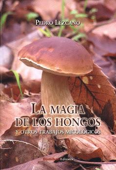La magia de los hongos