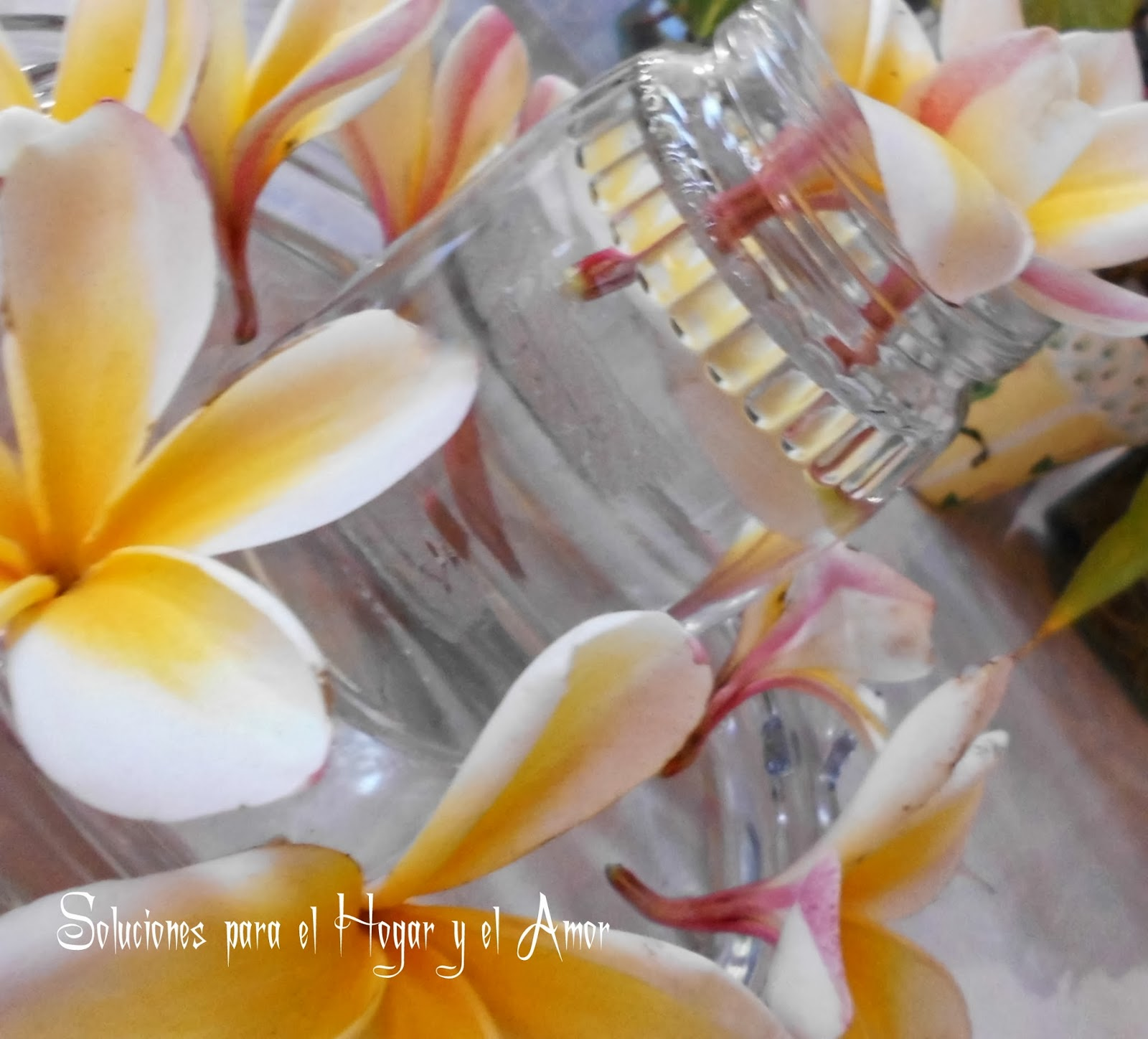 Arreglo con grupos de flores