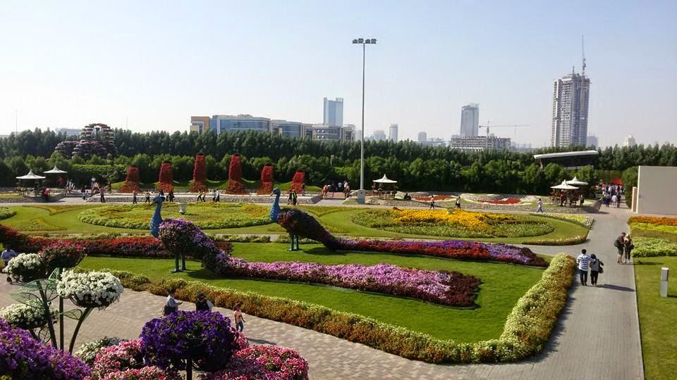 paroramica del miracle garden