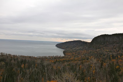 Minnesota's second and third growth on the north shore of Lake Superior