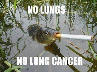 No Lungs - No Lung Cancer - Animal Funny Photos @ funkyphotos.org'/></a></div> <center> <a href=