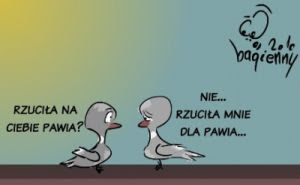 komiks paw semantyka