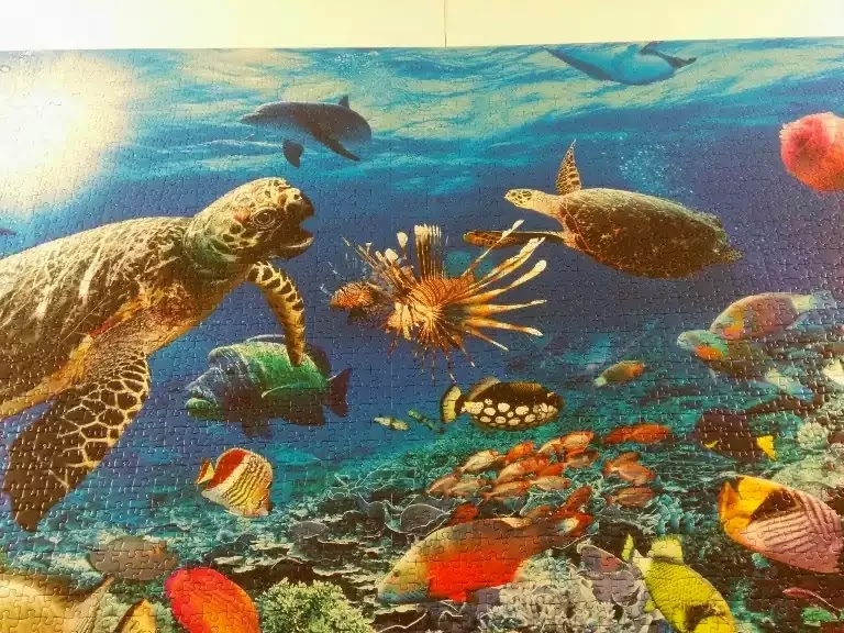 Ravensburger Under the Sea 5000 piece jigsaw puzzle close-up 4