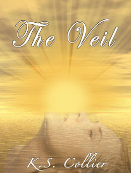The Veil by K.S. Collier