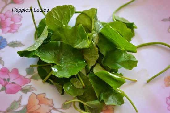 Brahmi Leaves: Health, Hair and Skin Benefits