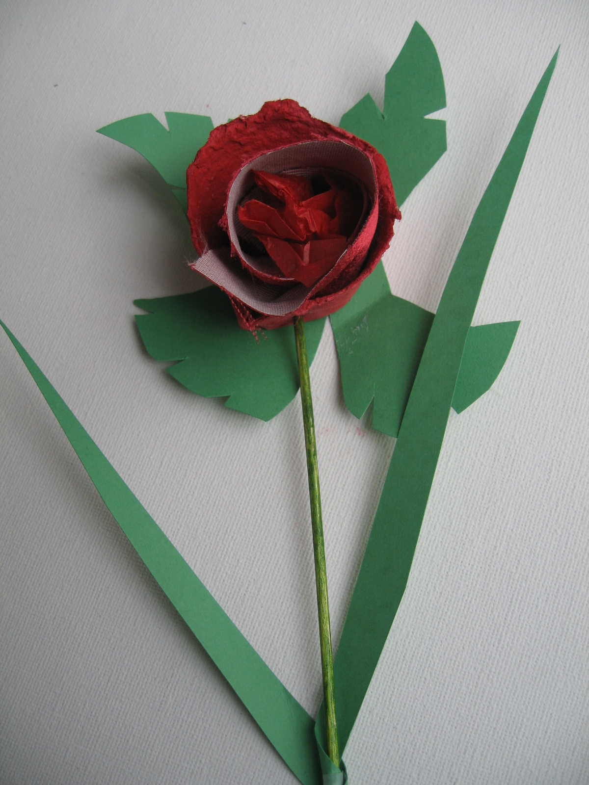 craft with jack  rose stem