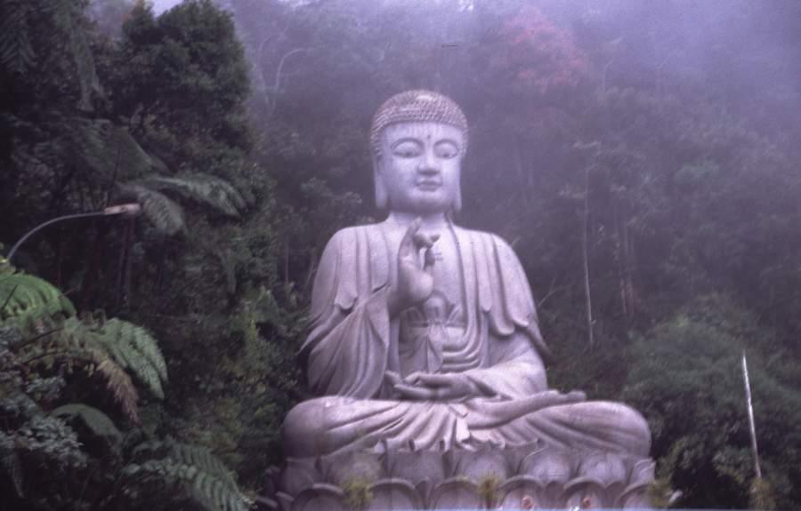 Http Aombracho Blogspot Com 2011 06 Buddha Html