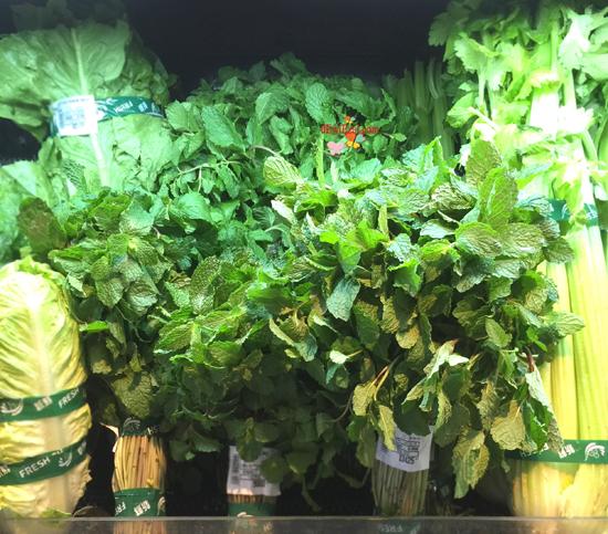 Resep Infus water untuk diet,dimana membeli daunt mint?,jual daun mint,infused water, apa itu infus water,pengalaman menggunakan infus water diet