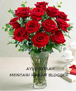 SEGMEN : AYUINSYIRAH MENCARI RAKAN BLOGGER