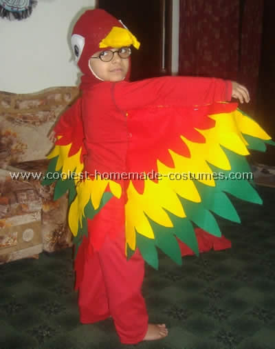 Homemade Parrot Costume Ideas