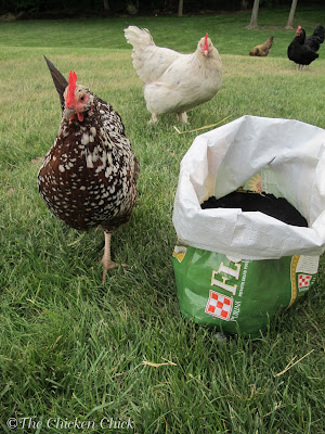 DIY Tater Totes, upcycled feed bag potato patch