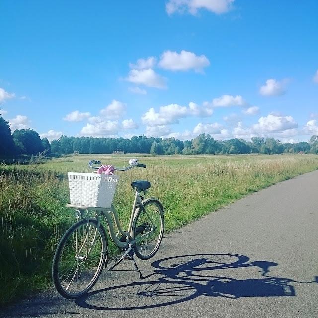 holenderski rower,sparta pick up,wygodny rower, jaki rower wybrać, rower DIY,Amsterdam gdzie kupic rower, krajobraz, pogoda na rower