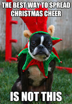 Grumpy Holiday Dog