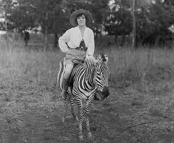 osa johnson 1930s zebra