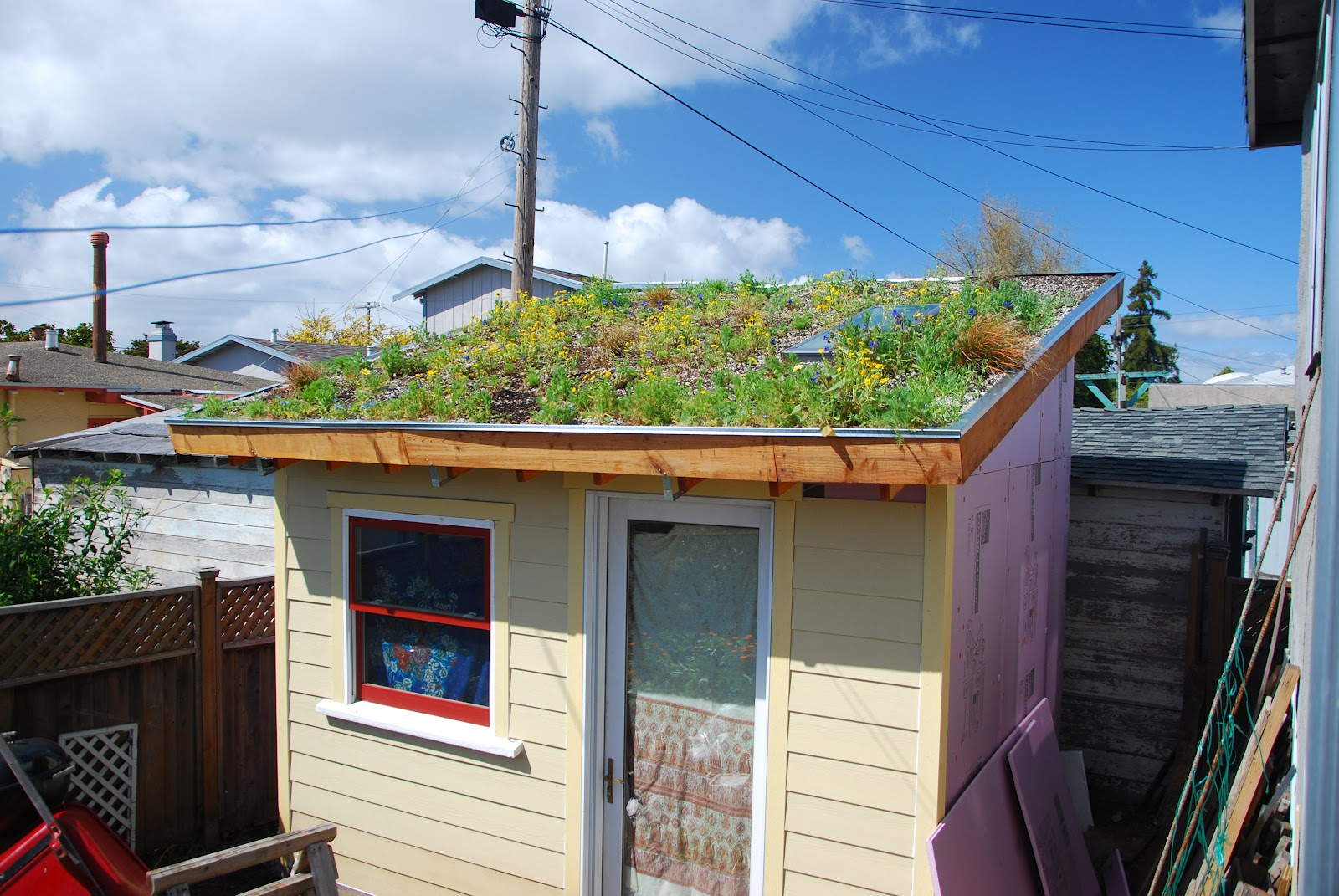 Tiny backyard house green roof in bloom loft built for Tiny backyard houses