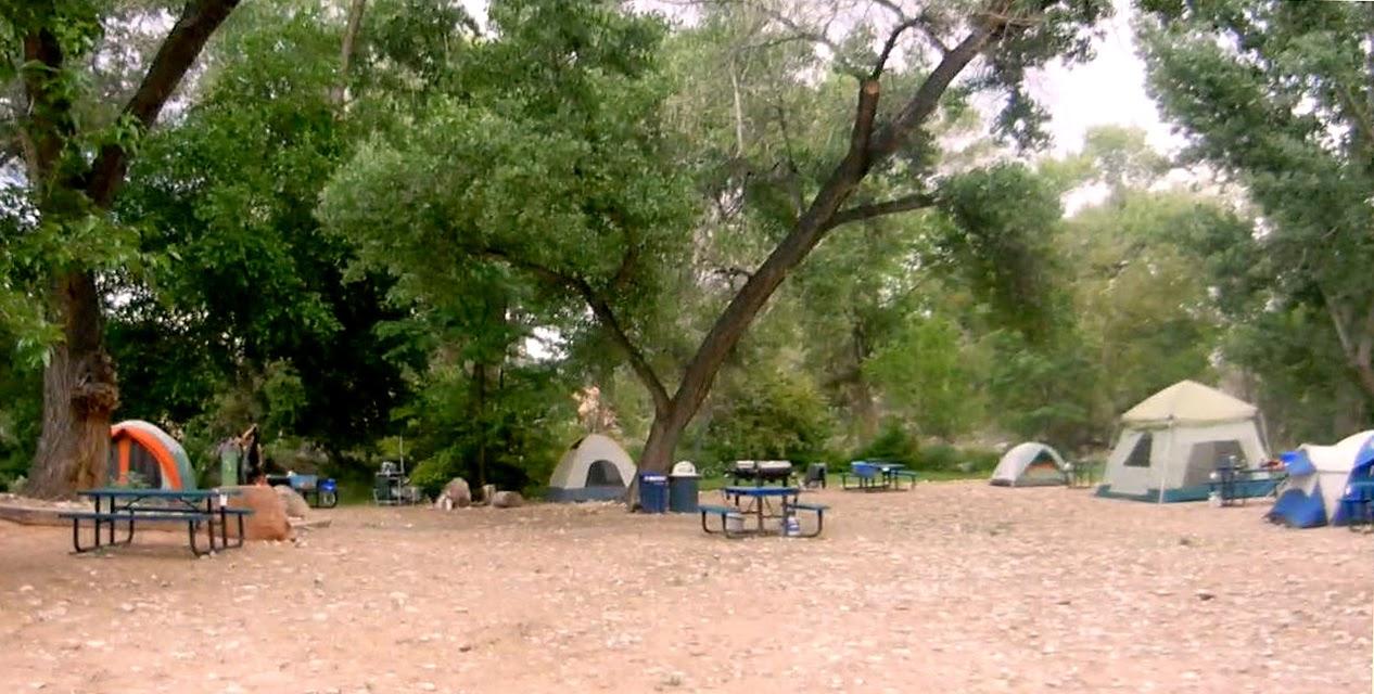 Dog Free Campsites