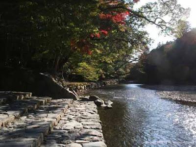Tempat Wisata Musim Gugur Terbaik Di Jepang