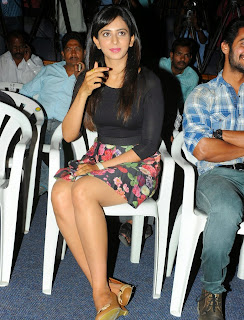 Actress Rakul Preet Singh Pictures in Floral Short Skirt at Rough Teaser Launch  63.jpg