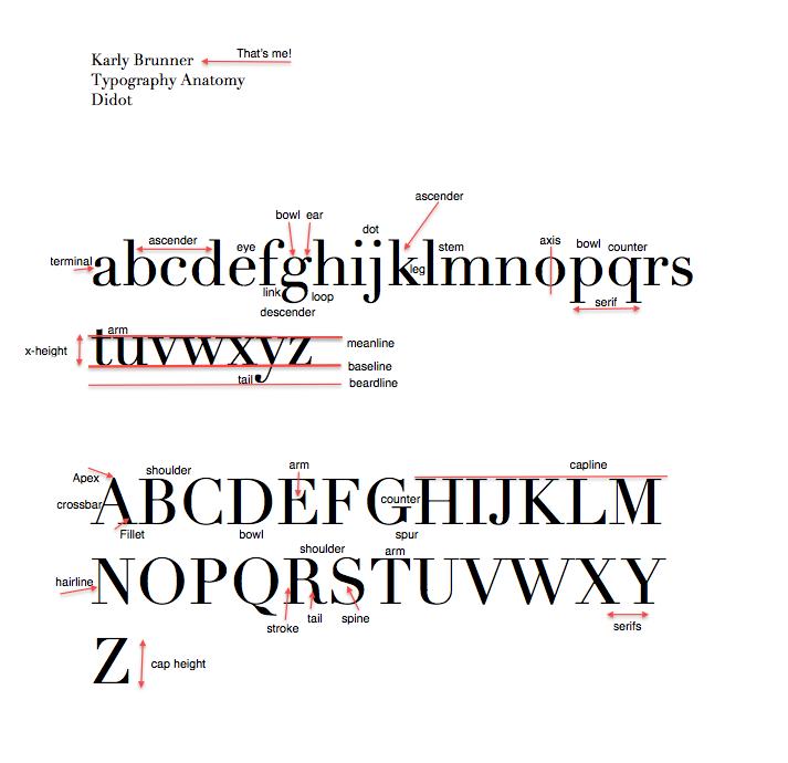 Typographywinter2014 Brunner The Anatomy Of Typography