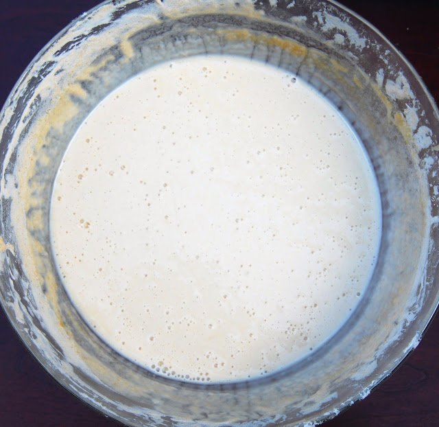 Homemade sourdough starter