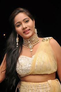 Actress Mitra  Pictures in Half Saree at DollorKi Maro Vipu Audio Launch  06.jpg