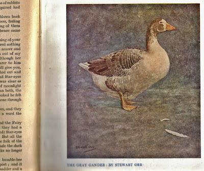 Painting of a gander