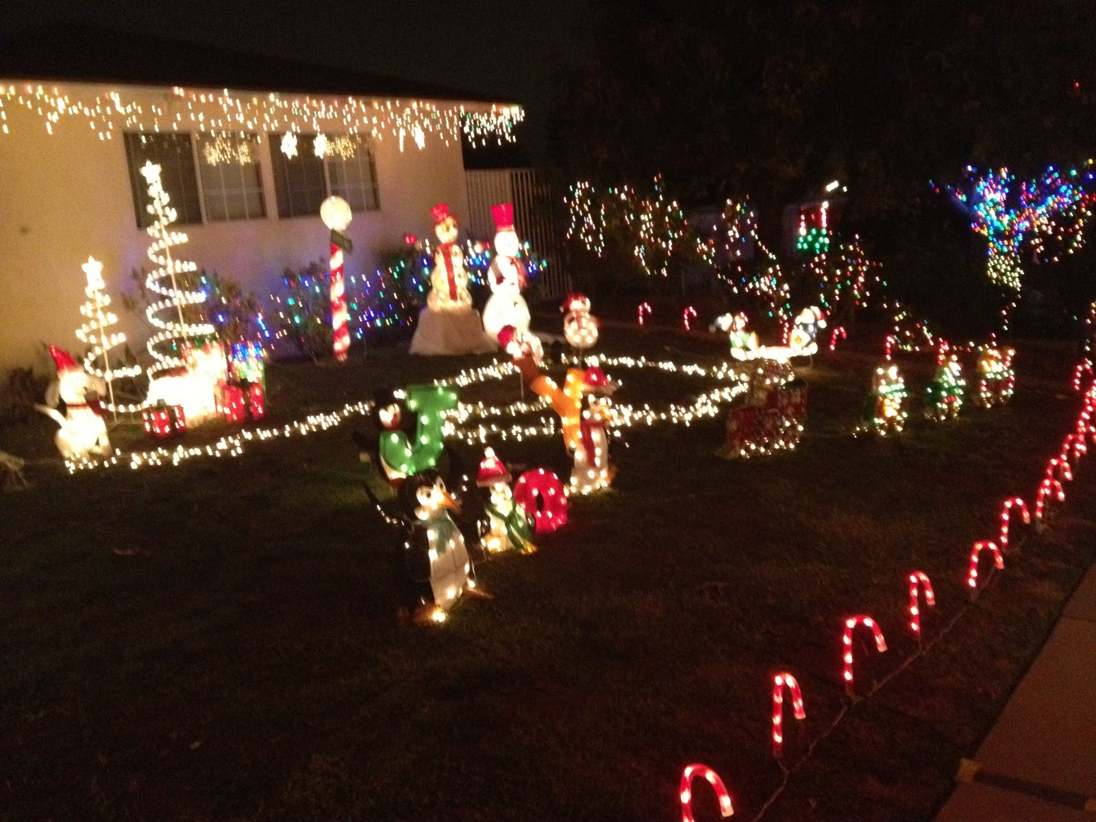and the final stop my personal favorite hastings ranch - Hastings Ranch Christmas Lights