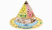 All about Gizi