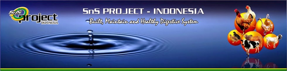 SnS PRO probiotik solution