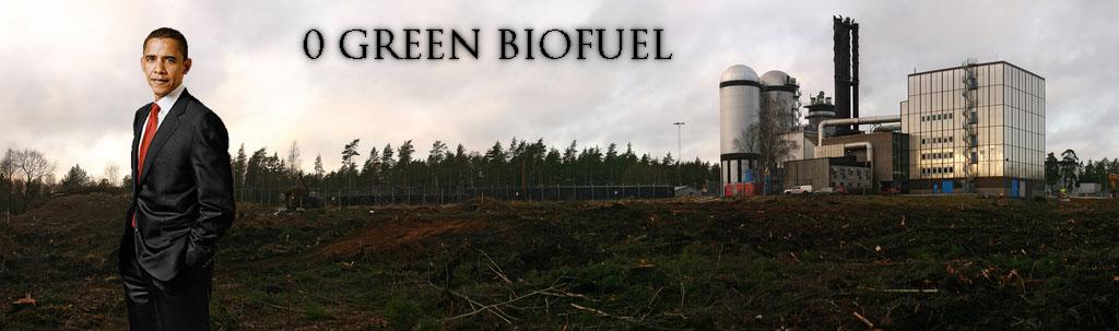 0 Green Bio Fuels
