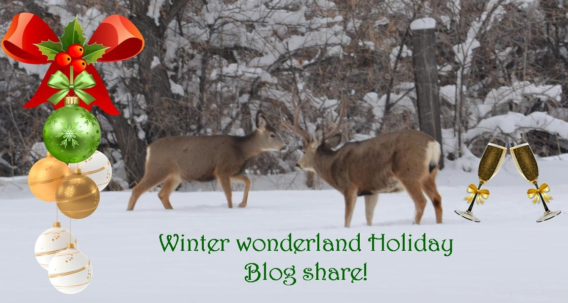 Winter Wonderland Holiday Blog Share