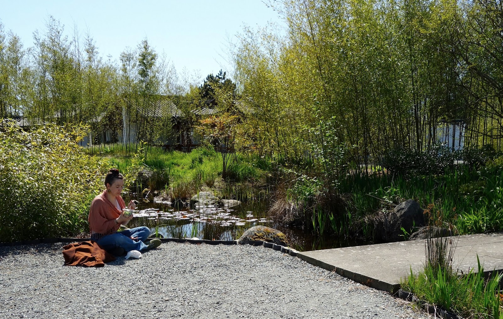 chaliese poset from seattle captures restorative energy in the garden - Seattle Chinese Garden