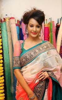 Actress Diksha Panth Latest Pictures in Saree at Nakshatra Designer Store Launch  23.jpg