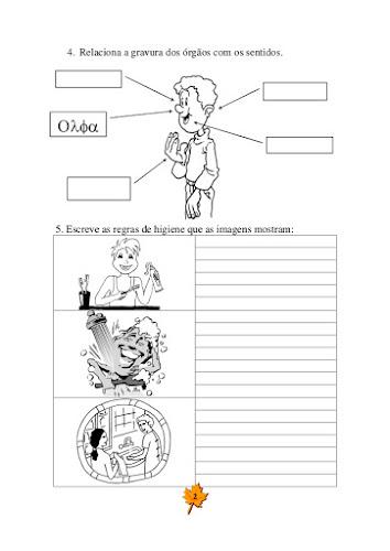 Ficha de Avaliação Mensal de Estudo do Meio