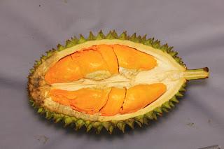 durian orange