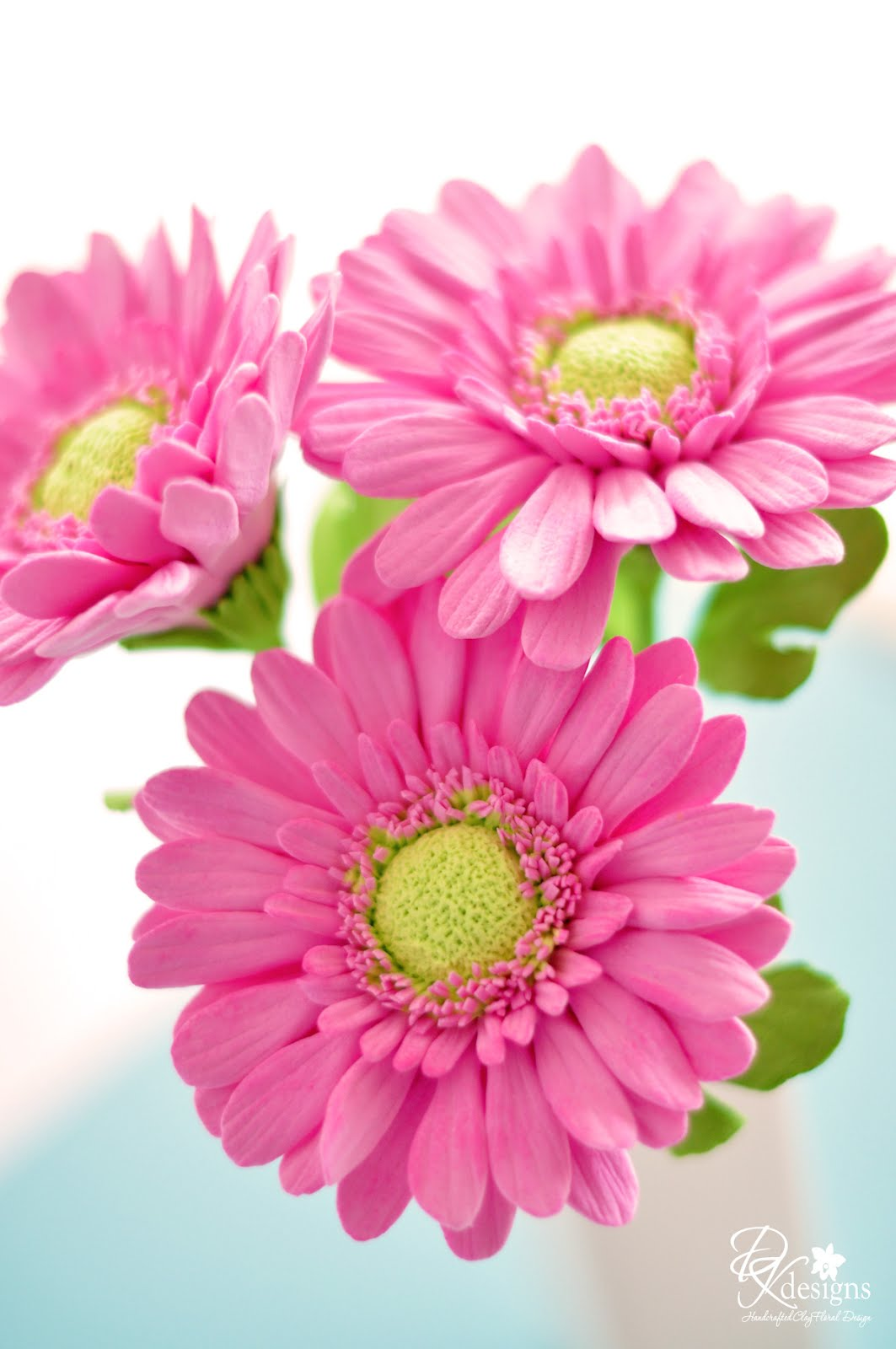 Dk Designs Pink Gerbera Daisies On This Stormy Day