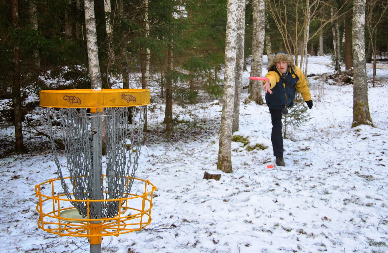 Laumu Ziemas mači '2014 disku golfā