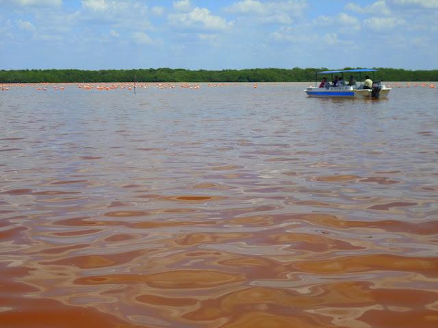 A agua cor de rosa