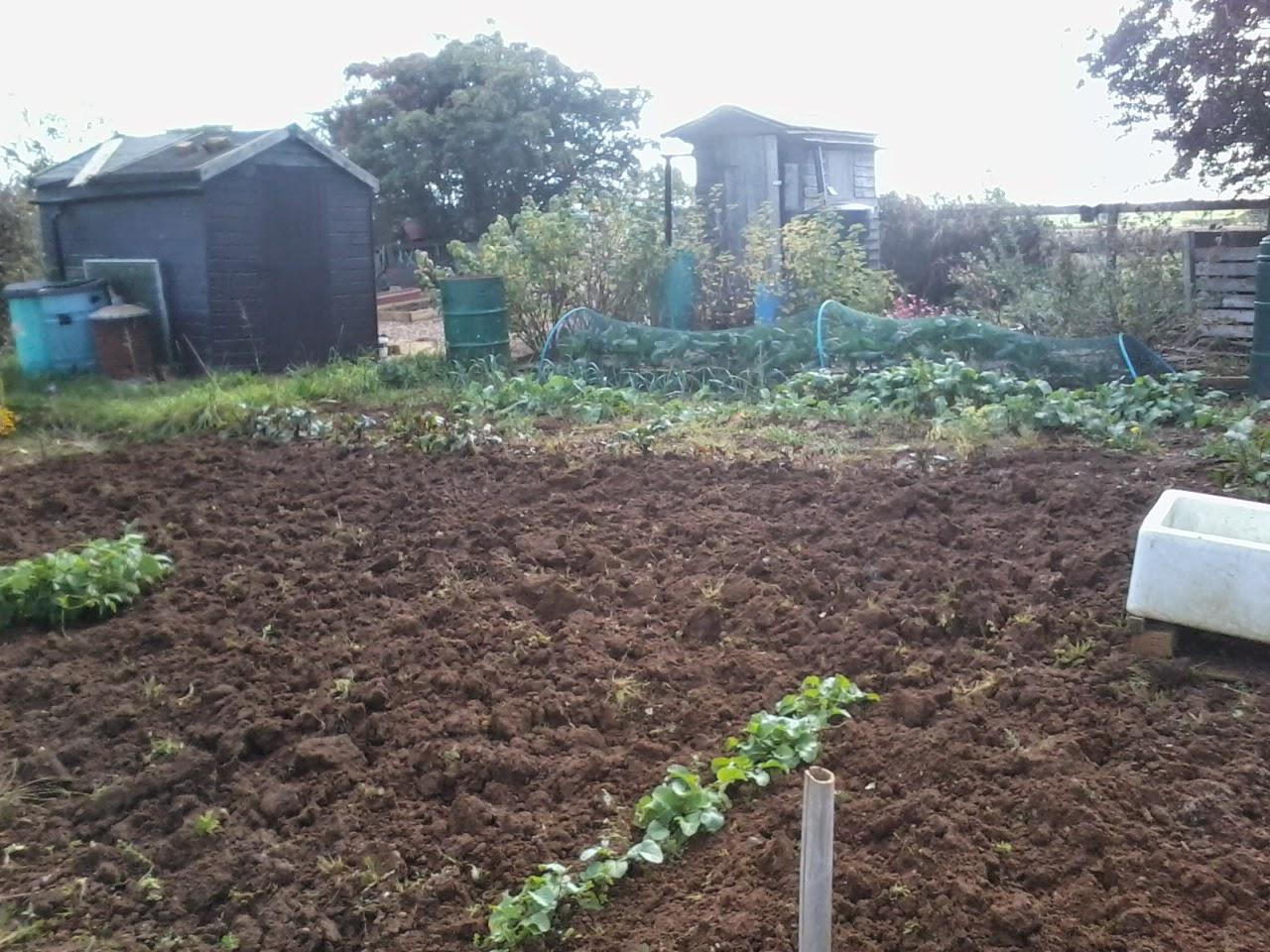 freshly dug soil
