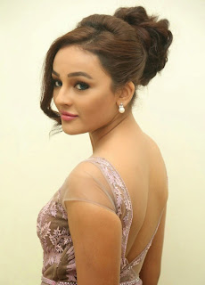 Seerat Kapoor Stills at Tiger Movie Audio Launch 12.jpg