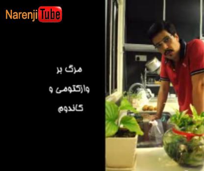 محمود فرجامی